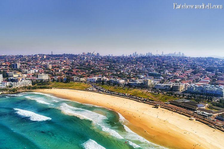 Panduan Wisata Pantai Bondi Legendaris Di Sydney
